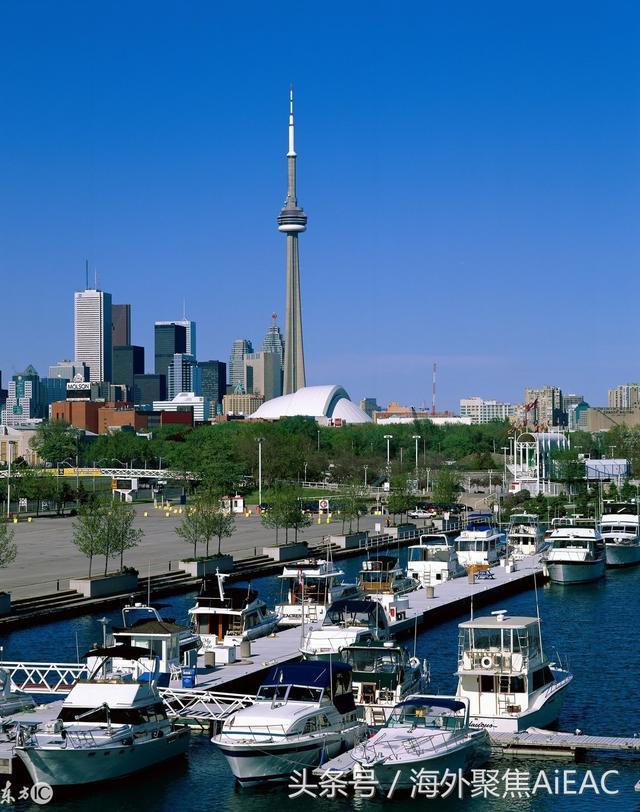 就像新西兰人逃离奥克兰一样 加拿大人开始逃离多伦多了