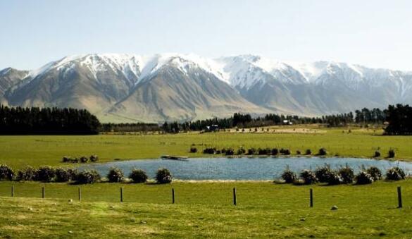 新西兰加大对海外投资者购地控制力度 部分已购土地被强制出售